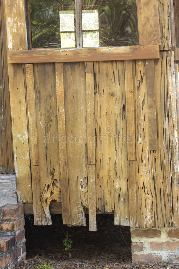 Close up do tapume do cipreste na cabine velha em Kissimmee, Florida imagem de stock royalty free
