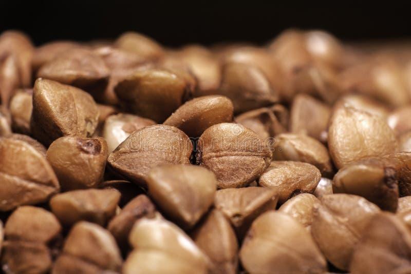 Close up do trigo mourisco da grão imagens de stock royalty free