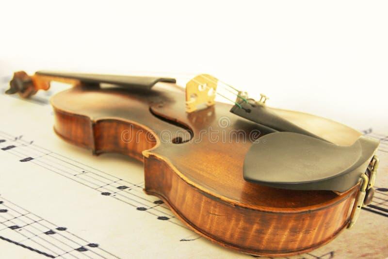 Close-up do violino fotografia de stock royalty free