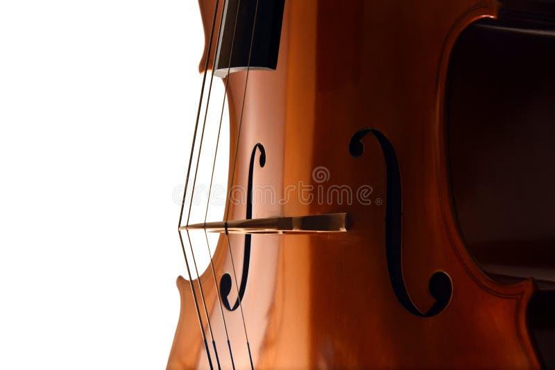 Close up do violoncelo no fundo branco imagem de stock royalty free