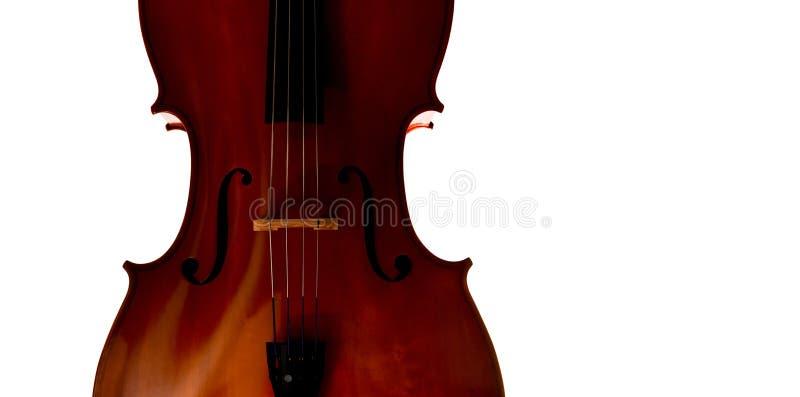 Close up do violoncelo no fundo branco imagens de stock royalty free