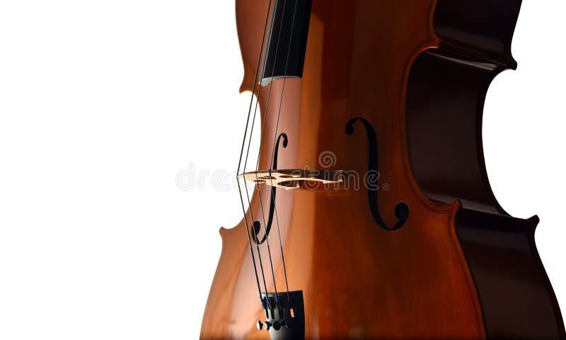 Close up do violoncelo no fundo branco imagens de stock