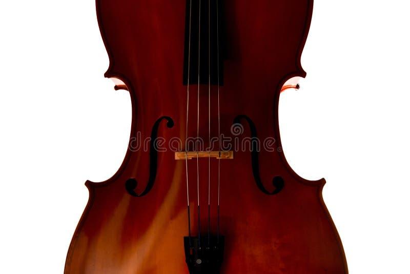 Close up do violoncelo no fundo branco foto de stock royalty free