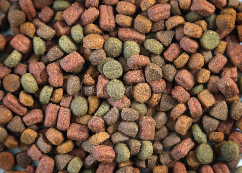 Close up of domestic dry animal food for cats or dogs. Pile of crunchy snacks for pets.  royalty free stock photography