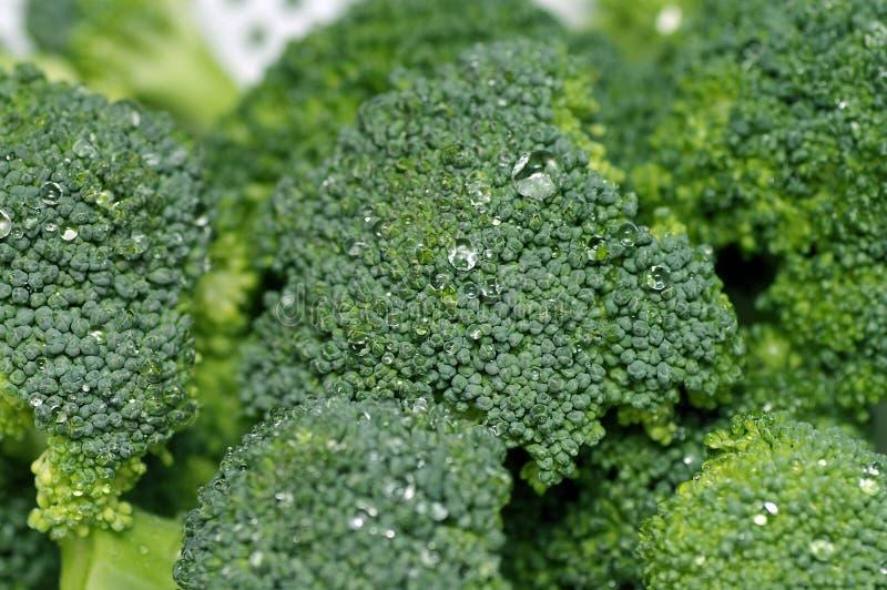 Close up dos bróculos imagens de stock