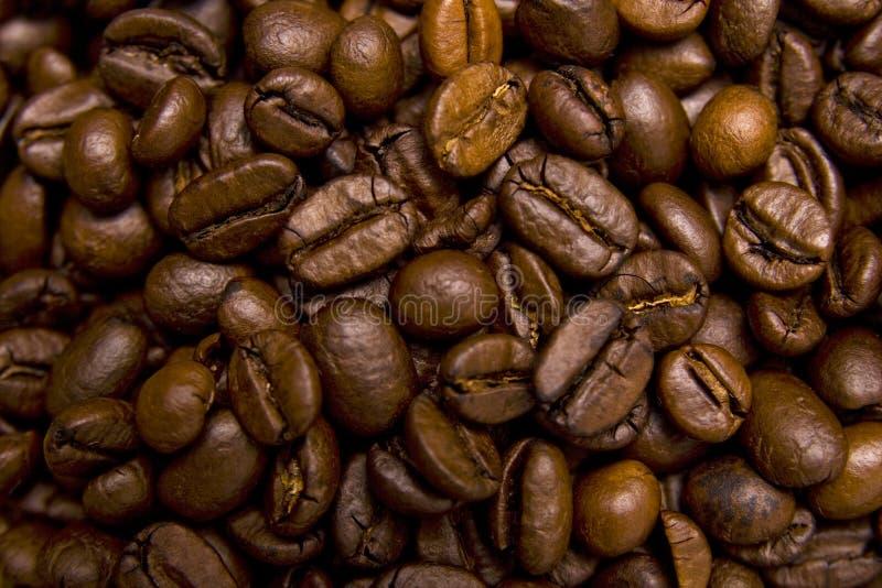 Close-up dos feijões de café fotografia de stock royalty free