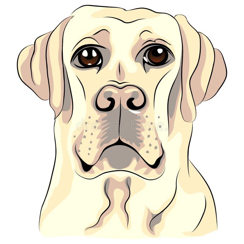 Close up dos retrievers de Labrador da raça do cão do esboço da cor ilustração royalty free