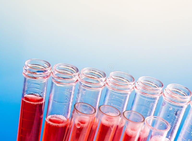 Close up dos tubos de ensaio com líquido vermelho no laboratório imagem de stock royalty free