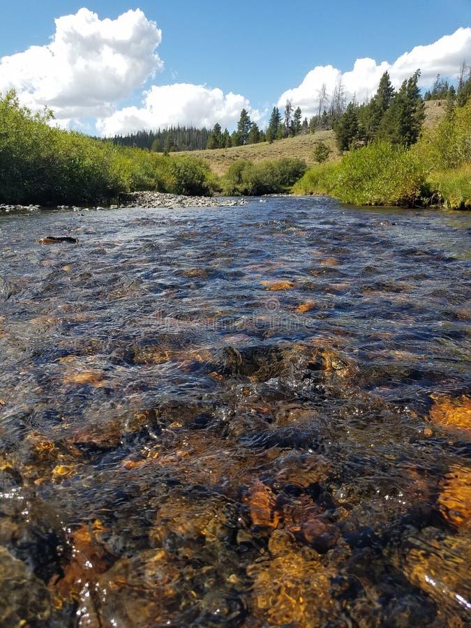 Close up of the Douglas Creek, Laramie, Wyoming royalty free stock photos