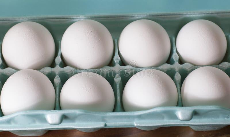 A Dozen Eggs. Close up of a dozen bleached eggs in a carton royalty free stock photography