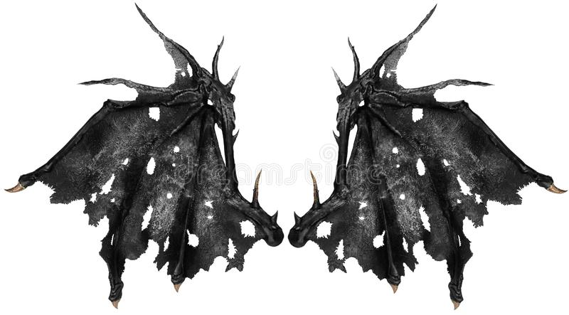 Close up on dragon wings isolated on white background. Cut out royalty free illustration