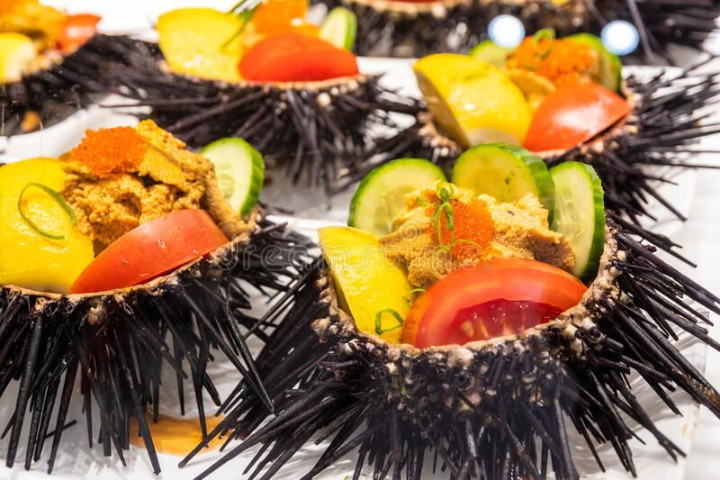 Close-up of dressed raw sea urchins from the market royalty free stock image