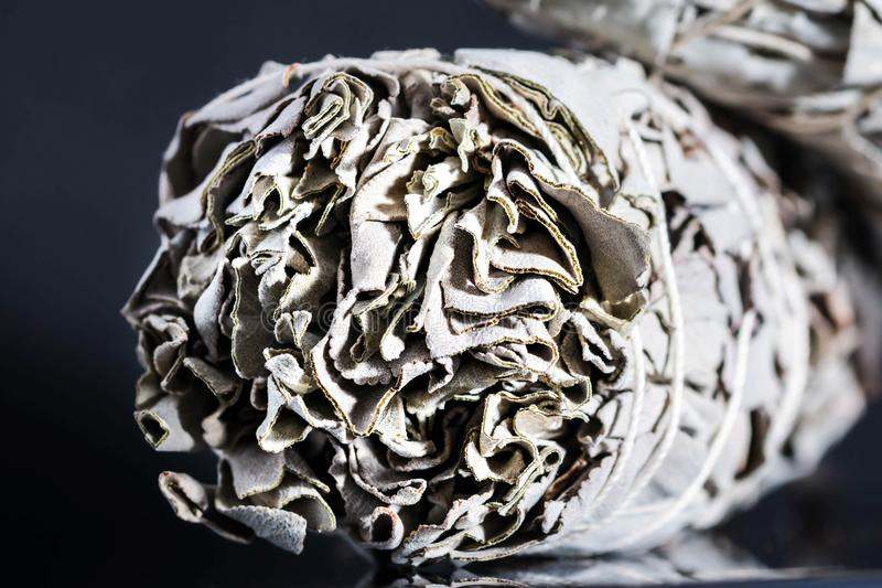 Ceremonial White Sage salvia apiana smoldering fumigation. Close up Dried White Sage Smudge Stick dried leaves isolated on black background. White sage plant is stock images