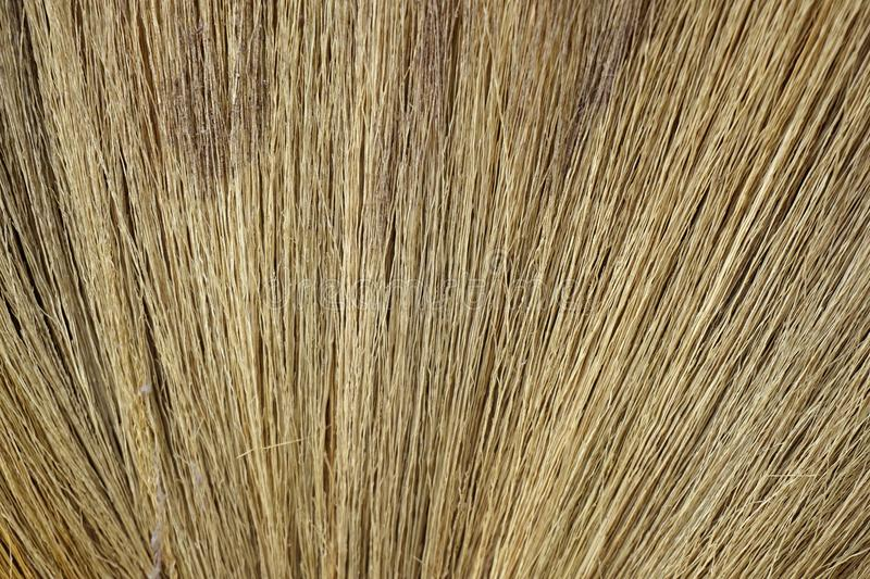 Dry broom texture. Close up dry broom texture royalty free stock images