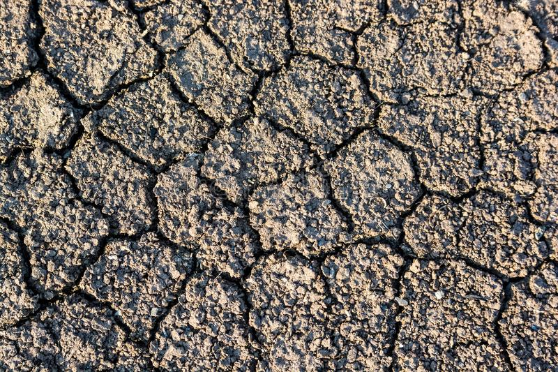 Dry fall ground with cracks royalty free stock photo