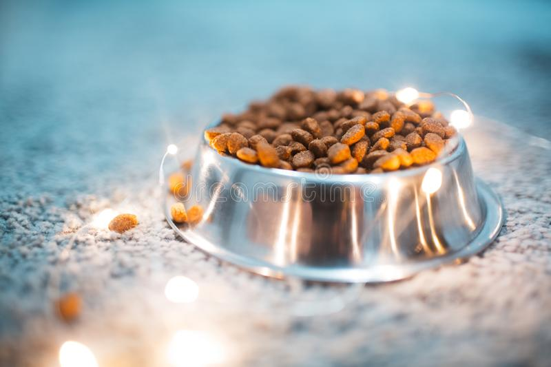 Close-up of dry food for cats in metal bowl near garlands on the floor. stock photography
