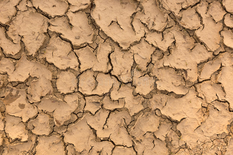 Close up of dry ground.  stock image