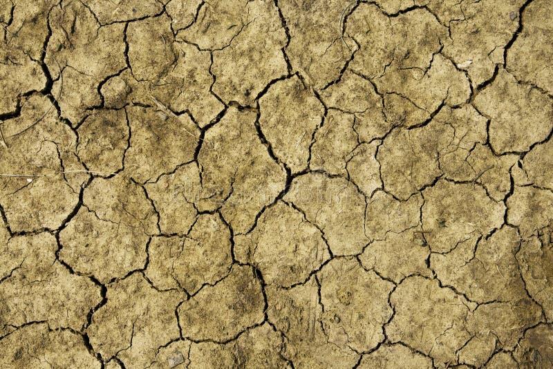 Close up on dry land stock image