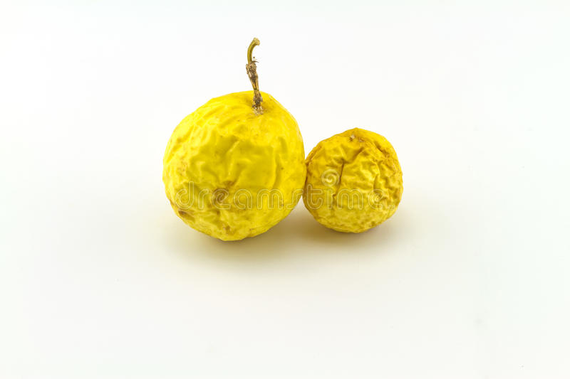 Close up dry yellow of Passionfruit Passiflora edulis on white royalty free stock photo
