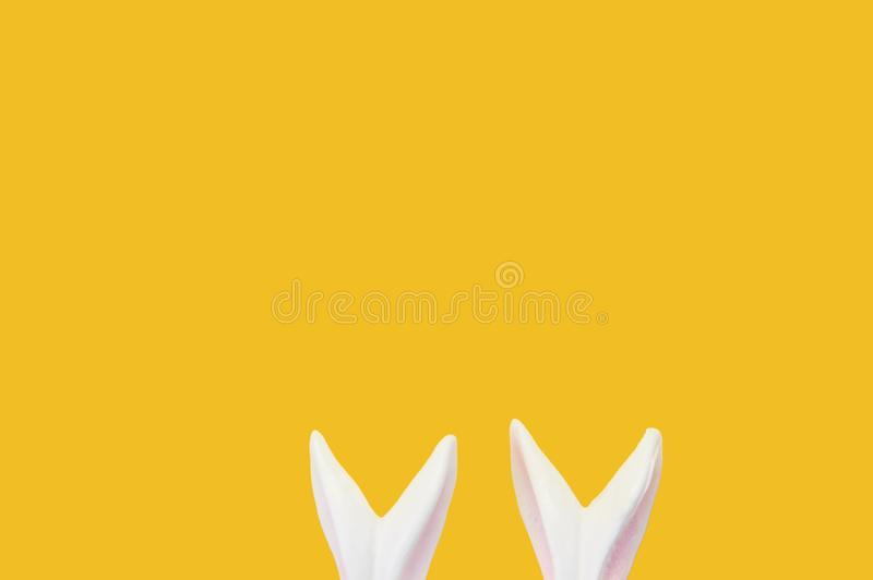 Close up. Easter concept. White porcelain rabbit ears isolated on hot yellow background. Copy space stock photos