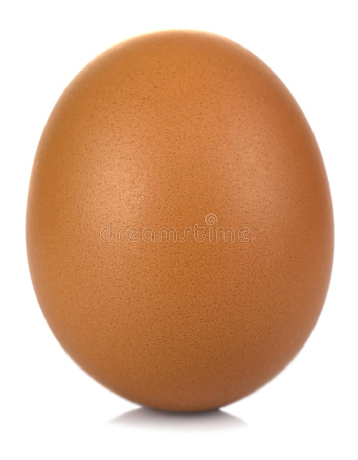 Close up of an egg isolated on white background. Image royalty free stock photos