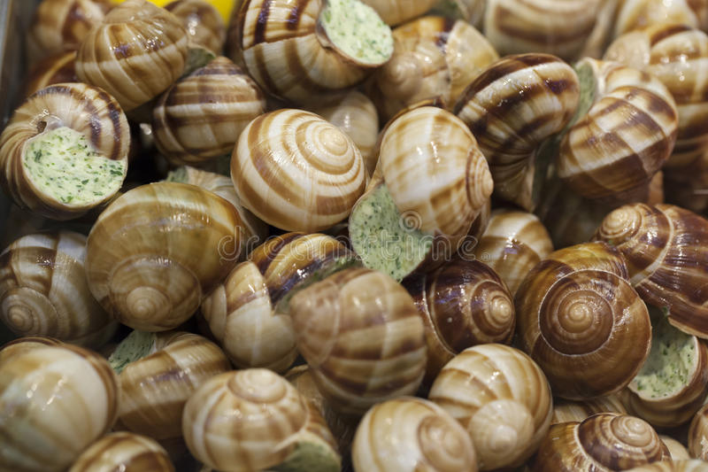 Close up em Escargot cozinhado de Bourgogne fotografia de stock