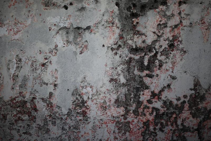 Close up, empty space, old cement wall, decay for abstract background royalty free stock images