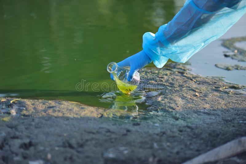 Close-up environmentalist hand of a researcher in a process of taking a sample of contaminated water from a lake.  royalty free stock photography