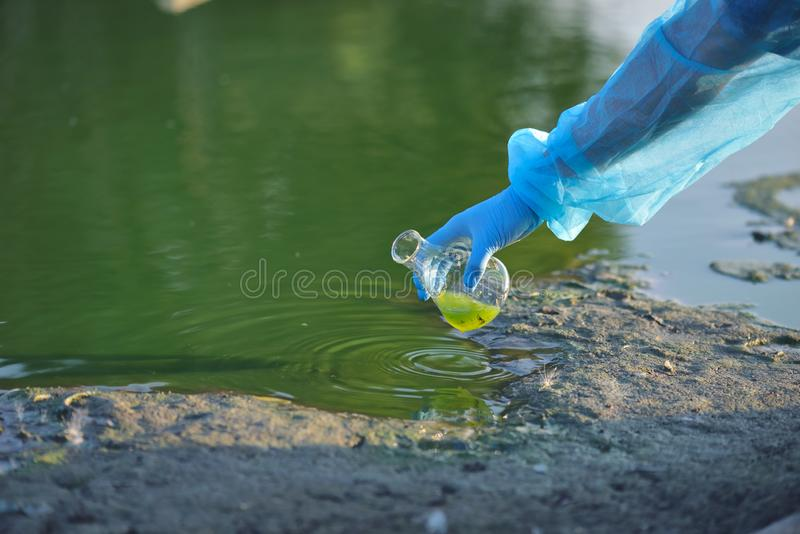 Close-up environmentalist hand of a researcher in a process of taking a sample of contaminated water from a lake.  royalty free stock image