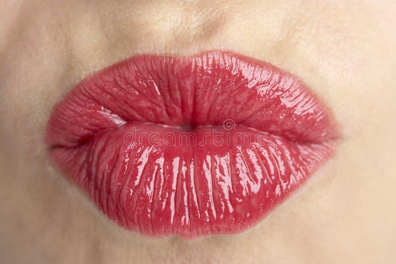 Close-Up extremo dos bordos da mulher envelhecida média imagem de stock