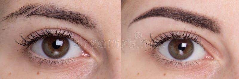 Close up eye face royalty free stock image