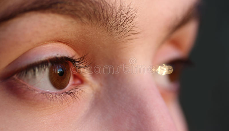 Download Close up of the eyes stock image. Image of iris, healthy - 22068235