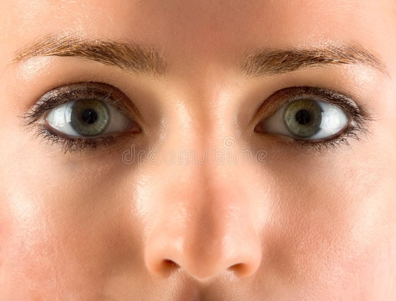 Download Close-up Of Eyes And Eyebrow Stock Photo - Image: 2261648