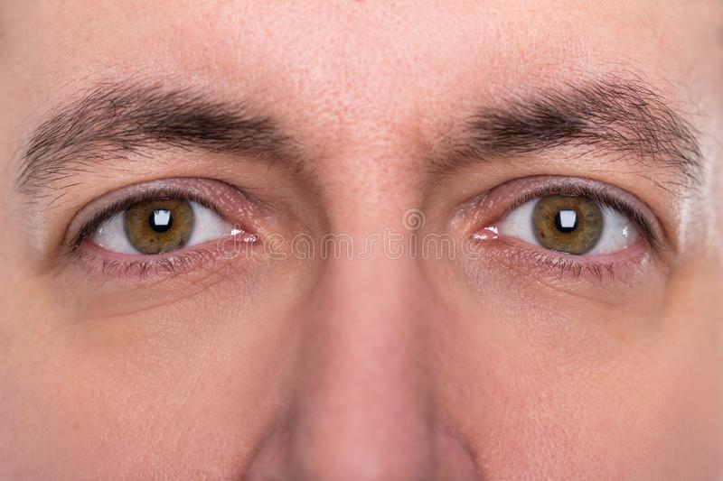 Close up, eyes and eyebrows from a man. Close up, brown eyes and eyebrows from a man stock photos