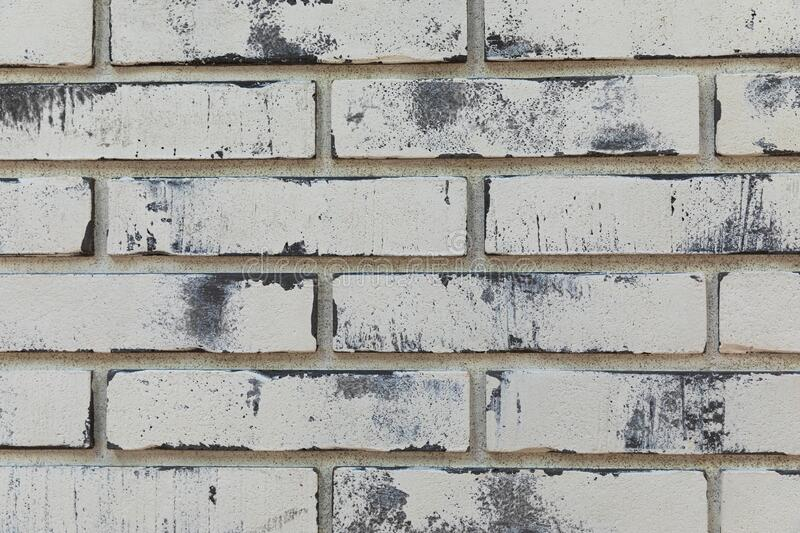 Close-up of a facade panel of a brickwork of ivory color.  royalty free stock image