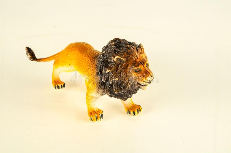 Close-up of feline cat lion plastic animal. Object on a White Background stock images