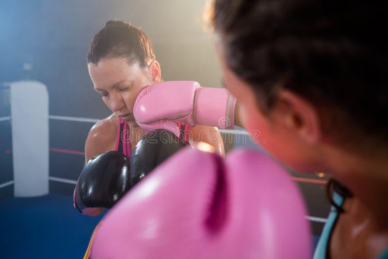 Close-up of female boxer punching athlete stock photos
