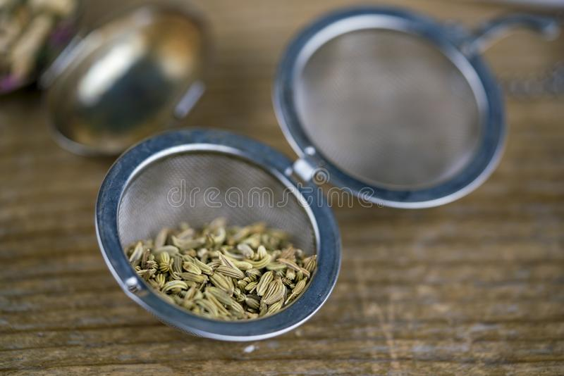Close up of fennel seeds in a tea strainer stock images