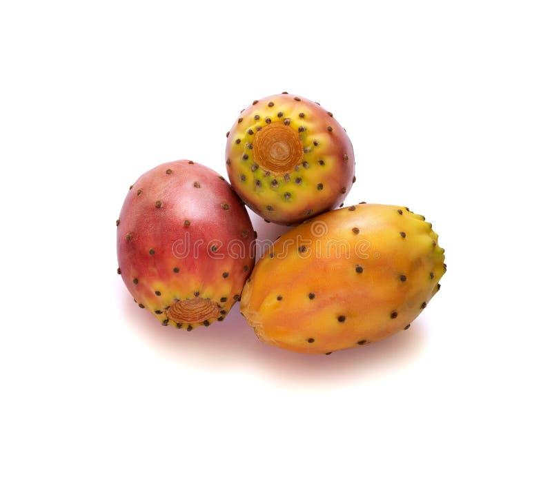 Close up ficus-indica do Opuntia Maduro do fruto do cacto de pera espinhosa isolado no fundo branco fotos de stock royalty free