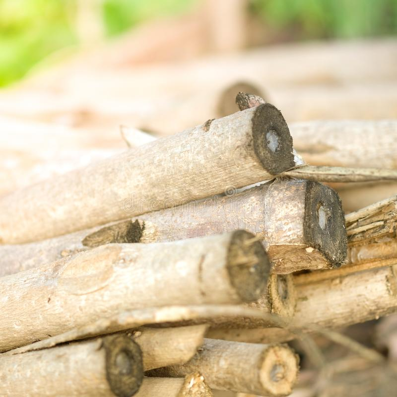 Close up of firewood from my home town stock photography