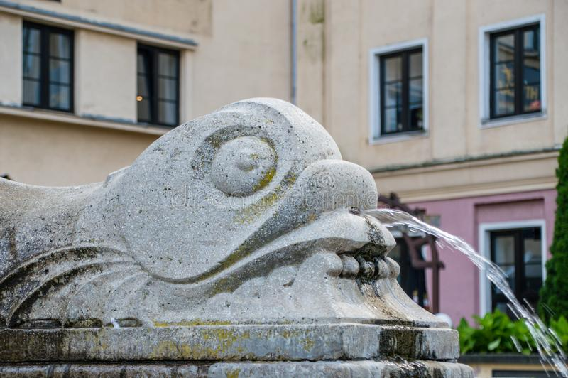 Close-up for fish head on fountain. Close-up for fish head on fountain royalty free stock photo