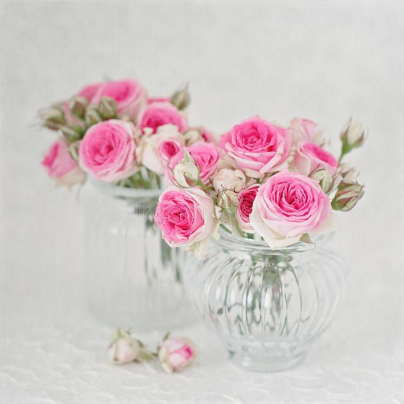 Many beautiful fresh pink roses on a table. royalty free stock image