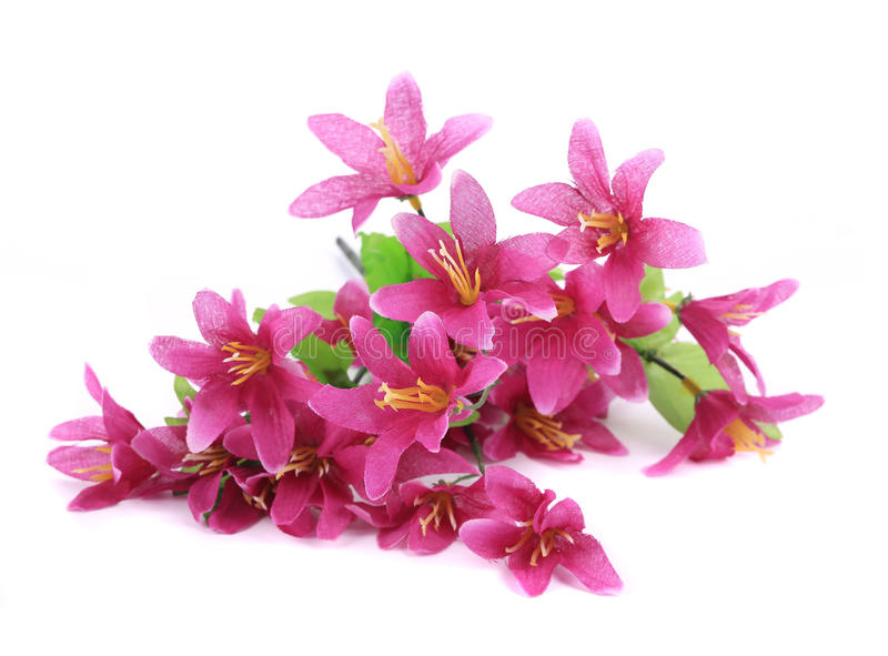 Close Up Of Flower Bouquet. Royalty Free Stock Image