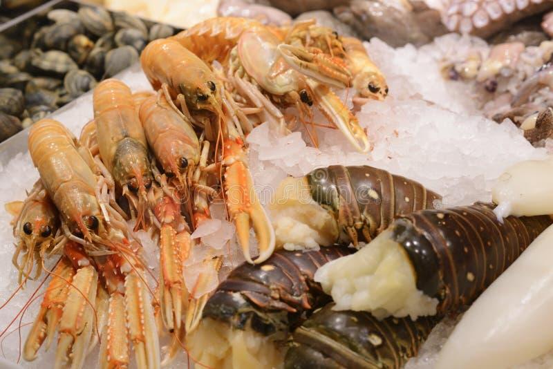 Close up fresco da lagosta foto de stock