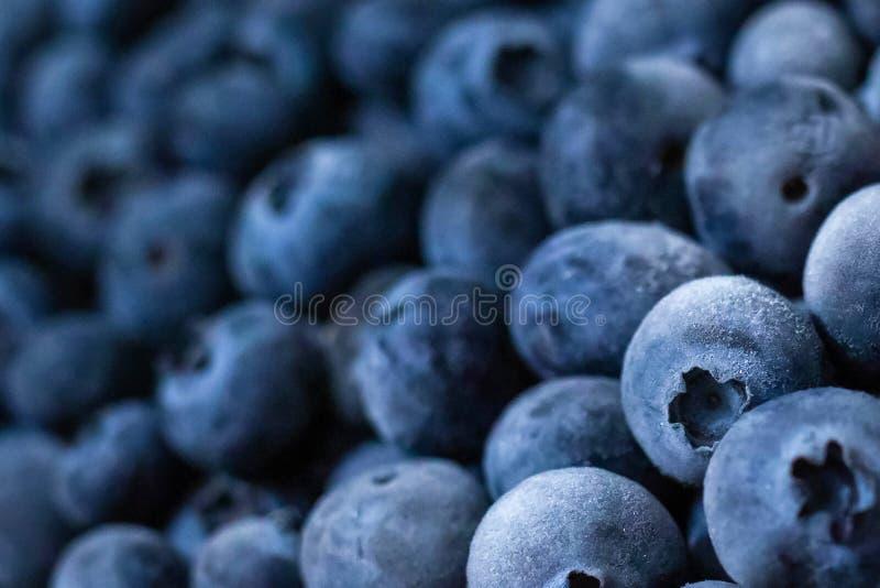 Close up fresh blueberries grouped macro background stock photos