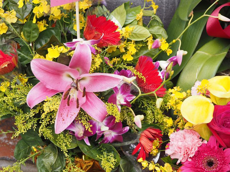 close up Fresh bright pink Colorful flower bouquet stock images