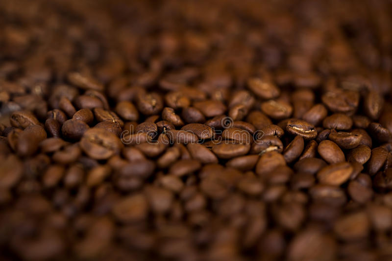 Close-up fresh coffee beans stock photo