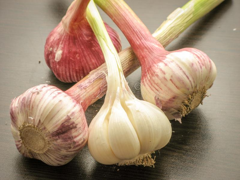 Close up of fresh  garlic bulb on a wooden table. Four heads of garlicfour. Natural seasoning. Antibacterial, boosts immunity. The concept of nutrition royalty free stock photos
