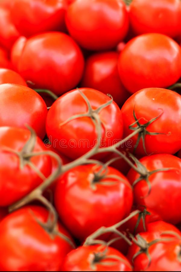Close up of fresh organic tomatos at outdoor farmers market. He stock images