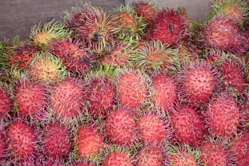 Fresh rambutan fruit. Close up fresh rambutan fruit royalty free stock photo
